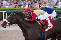 02-25-17 Gulfstream Park Stakes