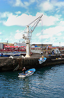 Crane hoisting fishing boat on to dock, Puerto de la Cruz, Tenerife, Canary Islands.