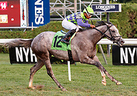 Sunshine Gal (no. 12) wins Race 11, Sep. 3, 2018 at the Saratoga Race Course, Saratoga Springs, NY.  Ridden by Ricardo Santana, Jr., and trained by Danny Gargan, Sunshine Gal  finished 2 3/4 lengths in front of Grand Banks (no. 10).  (Bruce Dudek/Eclipse Sportswire)