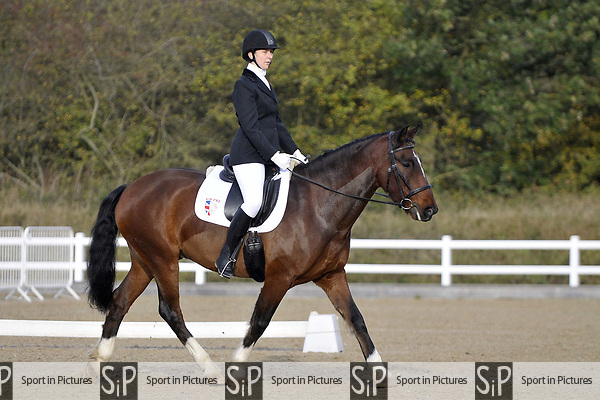 Class 1. Intro C. Unaffiliated Dressage. Brook Farm training centre. Essex. UK. 28/10/2017. MANDATORY Credit Garry Bowden/Sportinpictures - NO UNAUTHORISED USE - 07837 394578