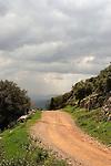 Israel, Mount Carmel. Carmel Scenic Road