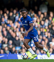 Michy Batshuayi of Chelsea during the Premier League match between Chelsea and Watford at Stamford Bridge, London, England on 21 October 2017. Photo by Andy Rowland.