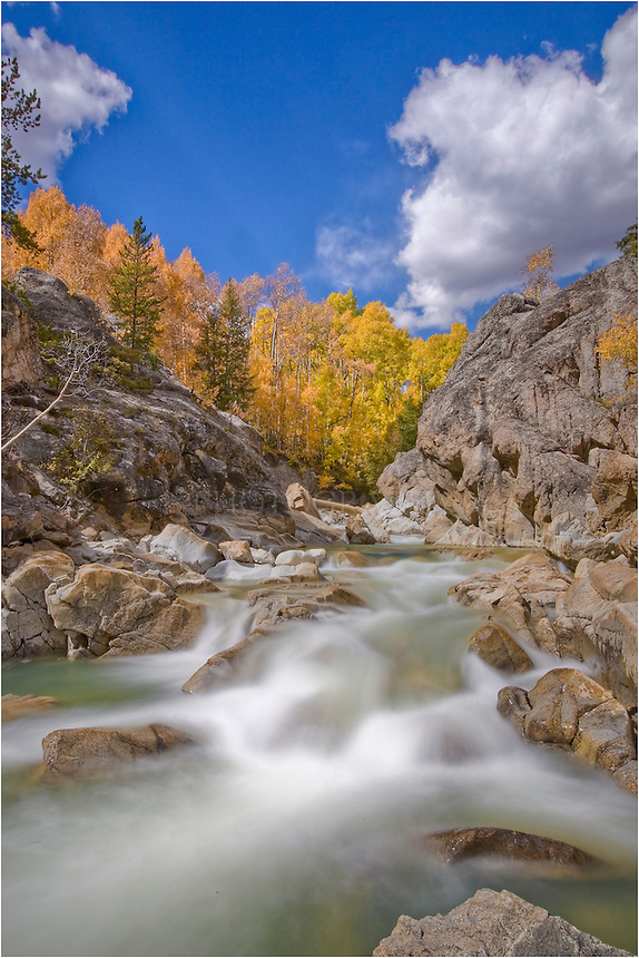 On a golden Autumn afternoon, I paused on the way down from Independence Pass to photograph Lake Creek. The aspen were gold and the waters were cold and clean in this Colorado image.