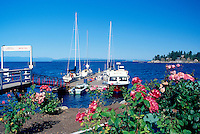 Pacific West Coast Waterfront Scene at Lund, BC, British Columbia, Canada - at the End of Highway 101