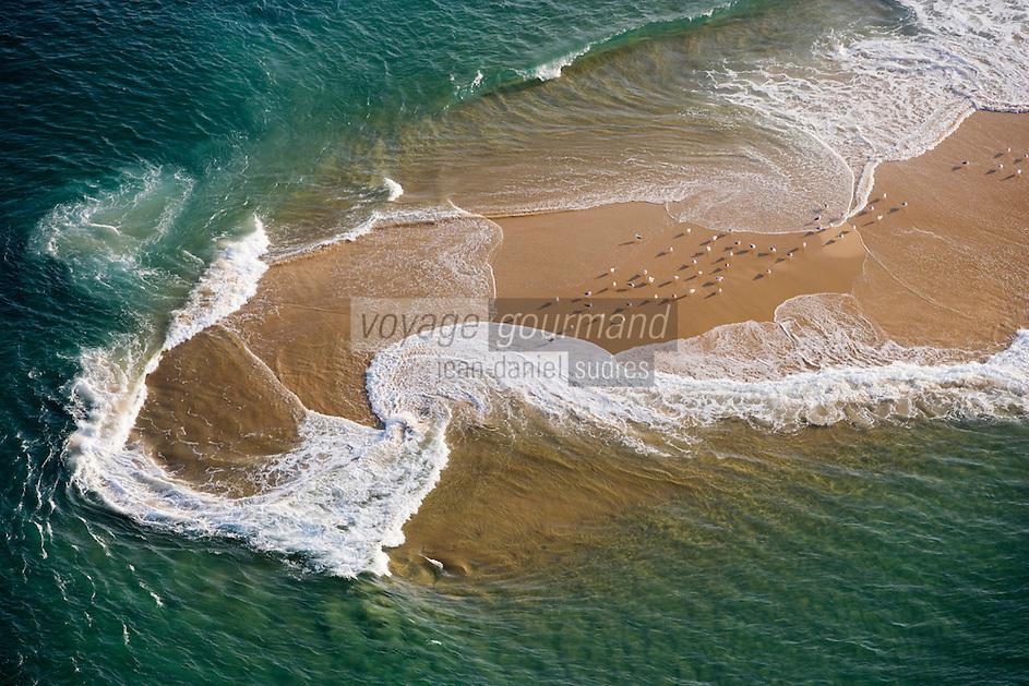 Europe/France/Aquitaine/33/Gironde/Bassin d'Arcachon: Réserve Naturelle du Banc d'Arguin mouettes sur un banc de sable - vue aérienne