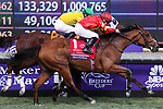November 2, 2019: Iridessa, ridden by Wayne Lordan, wins the Maker's Mark Breeders' Cup Filly & Mare Turf on Breeders' Cup World Championship Saturday at Santa Anita Park on November 2, 2019: in Arcadia, California. Bill Denver/Eclipse Sportswire/CSM
