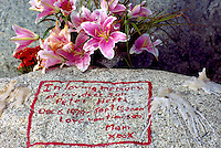 Memorial Flowers and Message on a Rock from a Mother to her Son