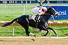 Track Rocker winning at Delaware Park on 10/17/12