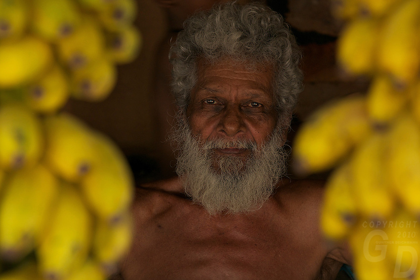 On the road to Colombo Sri Lanka, an old man selling Bananas