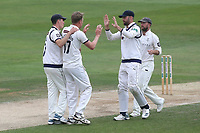 Steven Patterson of Essex celebrates with his team mates after taking the wicket of Alastair Cook during Essex CCC vs Yorkshire CCC, Specsavers County Championship Division 1 Cricket at The Cloudfm County Ground on 9th July 2019