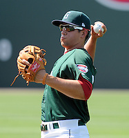 Third baseman Garin Cecchini (17) of the Greenville Drive prior to a game against the West Virginia Power on May 20, 2012, at Fluor Field at the West End in Greenville, South Carolina. Greenville won 6-5. (Tom Priddy/Four Seam Images)