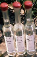 Europe/France/Midi-Pyrénées/46/Lot/Vallée du Céré/Bretenoux: Les eaux de vie de prune de Nathalie Bergues (distillatrice)