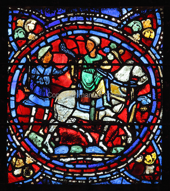 The servant of the younger son refuses to accompany him. The son rides off on his white horse, wearing a white linen cap, from the Parable of the Prodigal Son stained glass window, in the north transept of Chartres Cathedral, Eure-et-Loir, France. This window follows the parable as told by St Luke in his gospel. It is thought to have been donated by courtesans, who feature in 11 of the 30 sections. Chartres cathedral was built 1194-1250 and is a fine example of Gothic architecture. Most of its windows date from 1205-40 although a few earlier 12th century examples are also intact. It was declared a UNESCO World Heritage Site in 1979. Picture by Manuel Cohen