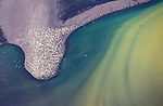 Aerial of harbor seal, Togiak National Wildlife Refuge, Bristol Bay, Alaska