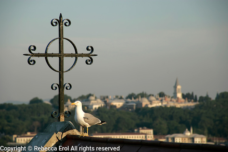 The cross of the Crimean Church in Galata with the Topkapi Palace in the background, Istanbul, Turkey