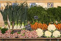 France, Pas-de-Calais (62), Côte d'Opale, Le Touquet: Le marché  , détail étal, légumes //  France, Pas de Calais, Cote d'Opale (Opal Coast), Le Touquet: the market - retail stall vegetables