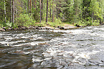 Änättikoski rapids, Lentiira, Kuhmo, Finland, Vartius near Russian Border, good trout fishing point