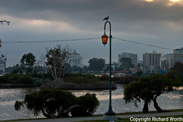 Surrounded by offices, apartment buildings, roads and two freeways, Lake Merritt boasts North America's oldest wildlife refuge.