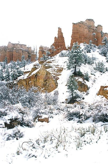 Winter, Red Canyon, Utah