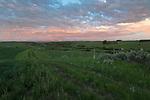 Idaho, Eastern, Ashton. Farmlands in evening light of spring with the Teton Mountains distant.