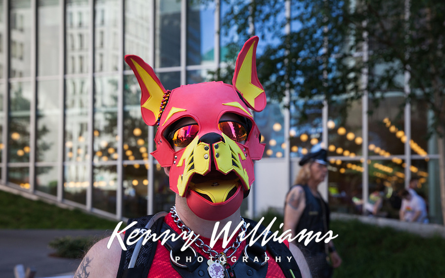Man wearing red leather dog mask, Seattle PrideFest 2016, Pride Parade and Festival, Washington, USA.