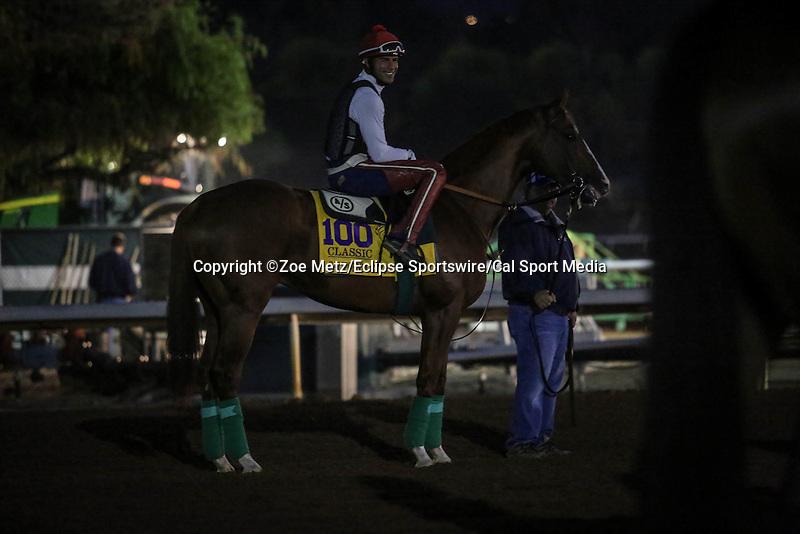 October 28, 2014: California Chrome exercises in preparation for the Breeders' Cup Classic at Santa Anita Park in Arcadia, California on October 28, 2014. Zoe Metz/ESW/CSM