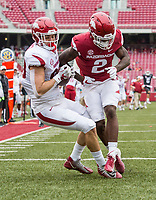 Hawgs Illustrated/BEN GOFF <br /> Grayson Gunter, Arkansas tight end, lands with a touchdown catch under pressure from safety Kamren Curl in the fourth quarter Saturday, April 6, 2019, after the Arkansas Red-White game at Reynolds Razorback Stadium.