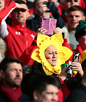 8th February 2020; Aviva Stadium, Dublin, Leinster, Ireland; International Six Nations Rugby, Ireland versus Wales; plenty of Welsh fans in Dublin to watch the game