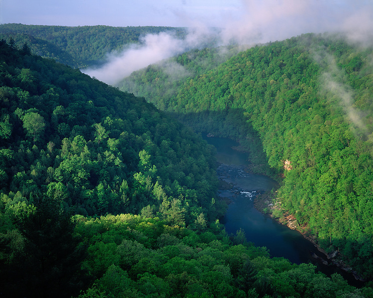 Foggy morning light on the Big South Fork River viewed from East Rim Overlook; Big South Fork National River and Recreation Area, TN