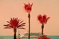 Europe/France/Provence-Alpes-Côte d'Azur/06/Alpes-Maritimes/Cannes: La croisette, yacht dans la baie de Cannes