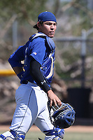 Alex Jackson (10) of Rancho Bernardo High School before a game against Westview High School at Rancho Bernardo High School on May 21, 2014 in San Diego, California.  (Larry Goren/Four Seam Images)