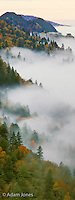 Mountain mist, Morton Overlook, Great Smoky Mountains National Park, Tennessee.