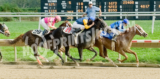 Dede's Mouse winning at Delaware Park on 9/26/11
