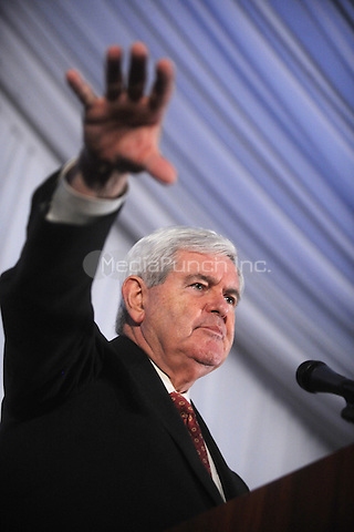 Newt Gingrich speaks to members of the Tea Party during a rally in Staten Island, New York. December 3, 2011. © mpi01 / MediaPunch Inc.