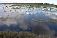 MARSH MANAGEMENT AREA<br /> Loxahatchee National Wildlife Refuge Florida<br /> Constructed in 1960 to show the public different freshwater habitats. The area contains 10 diked impoundments totaling about 270 acres. Water levels within the impoundments are managed to benefit different species of waterbirds. (Everglades)