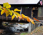 Detail image at Grahamsville (Chestnut Creek) Covered Bridge (1976),  that carries a park access road over the Chestnut Creek, off NY 55 (Main Street) in Grahamsville, NY, on Thursday, October 23, 2014. Photo by Jim Peppler. Copyright Jim Peppler 2014.
