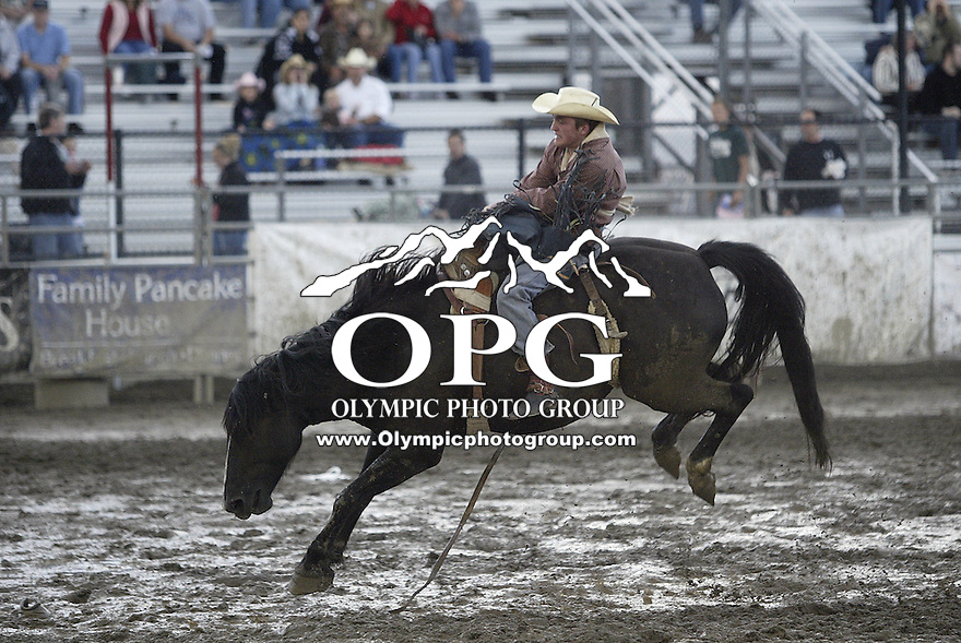 21 August 2008:  Morgan Wilde from McCammon, Idaho riding the horse Satan scored a 66 on his ride in the muddy arena at the Kitsap County Stampede Rodeo in Bremerton, Washington.