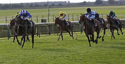 27.09.2014.  Newmarket, England. Betfred Cambridgeshire Day. Taqneyya under Paul Hanagan winning the Racing UK Maiden Fillies´ Stakes (Div 1)