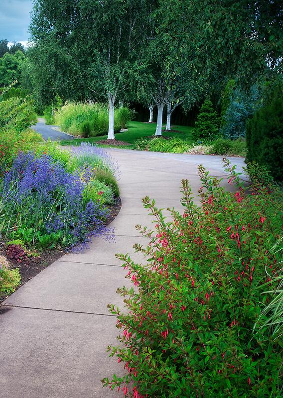 Pathway in Oregon Garden. Silverton, Oregon