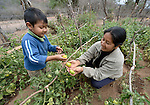 Johnny Antesano, a 4-year old Guarani indigenous boy in Choroquepiao, a small village in the Chaco region of Bolivia, helps his mother, Yela Vilera, in their family garden. They and their neighbors started their gardens with assistance from Church World Service, supplementing their corn-based diet with nutritious vegetables and fruits.