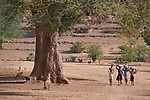 Children walking in Kauda, a village in the Nuba Mountains of Sudan. The area is controlled by the Sudan People's Liberation Movement-North, and frequently attacked by the military of Sudan. The Catholic Church sponsors schools and health care facilities throughout the war-torn region.