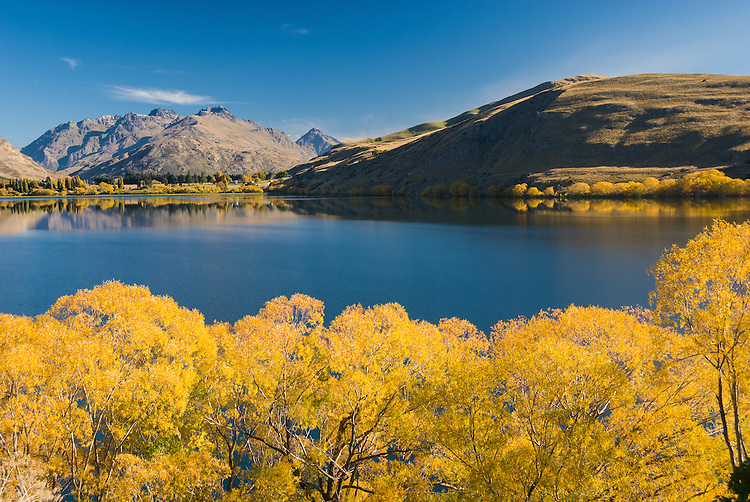 Autumn trees and the Remarkables reflected in Lake Hayes, Central Otago, South Island, New Zealand