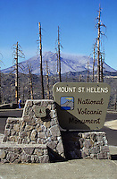 Mt. Saint Helens crater with dead trees and the national park sign
