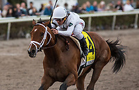 HALLANDALE BEACH, FL - February 3: Audible, #4, and Javier Castellano clench the Holy Bull Stakes (Grade II) for trainer Todd Pletcher at Gulfstream Park on February 3, 2018 in Hallandale Beach, FL. (Photo by Liz Lamont/Eclipse Sportswire/Getty Images.)