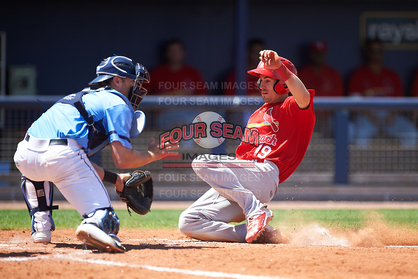 Palm Beach Cardinals left fielder Michael Pritchard (19) slides into home as catcher Mac James waits for a throw during a game against the Charlotte Stone Crabs on April 10, 2016 at Charlotte Sports Park in Port Charlotte, Florida.  Palm Beach defeated Charlotte 4-1.  (Mike Janes/Four Seam Images)