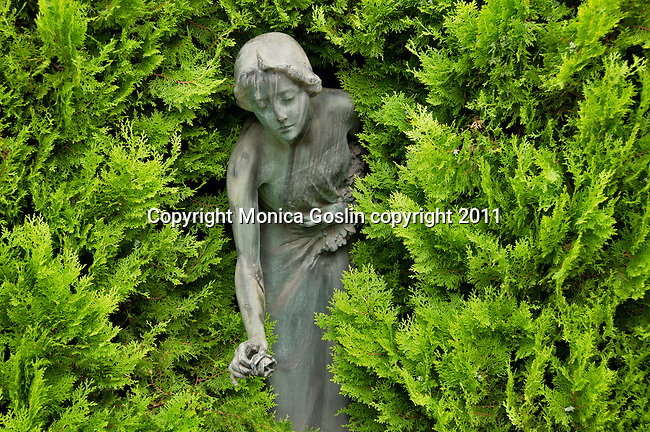 Statue of a woman holding a rose, stained patina and among the ferns in a cemetery in Como, Italy