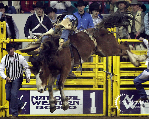 1/25/09--Photo by Rick Davis--PRCA cowboy Dustin Reeves of Owanka, South Dakota scores an 87 point bareback bronc ride on the bronc Pinball Wizard during final round action of the 103rd National Western Stock Show and Rodeo in Denver, Colorado. Dustin finished with a 3 head average of 254 points to tie for first place in PRCA Bareback riding with Tim Shirley of Conifer, Colorado.