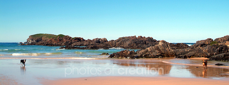 Beach at Delicate Nobby
