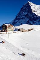 CHE, Schweiz, Kanton Bern, Berner Oberland, Grindelwald: Skiregion Kleine Scheidegg mit Eiger (3.970 m) - Rodeln | CHE, Switzerland, Canton Bern, Bernese Oberland, Grindelwald: Kleine Scheidegg - ski area with Eiger - tobogganing