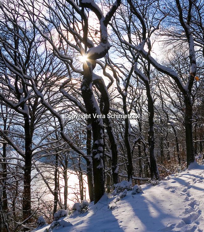 Europe, DEU, Germany, North Rhine-Westphalia, snowy winter trees....Europa, DEU, Deutschland, Nordrhein-Westfalen, verschneite Winterbaeume......[Copyright / Contact: Vera Schimetzek, Bornstrasse 5, 58300 Wetter, Germany, cell: 0049.(0)151.21220918, schimetzek@web.de, www.schimetzek-foto.de, publication is subject to a fee and report, the General Terms and Conditions apply. Die Veroeffentlichung ist melde- und honorarpflichtig, die AGB sind bindend.]